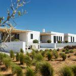 bushes around villa Faragas in Paros